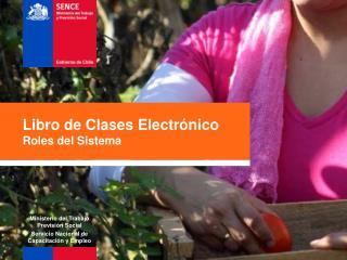 Libro de Clases Electrónico Roles del Sistema