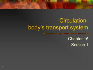 Circulation- body's transport system