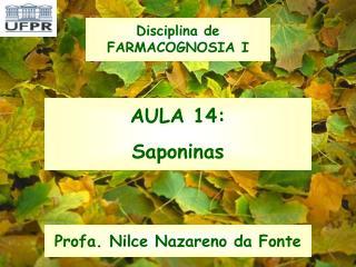 AULA 14: Saponinas