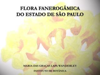 MARIA DAS GRAÇAS LAPA WANDERLEY INSTITUTO DE BOTÂNICA