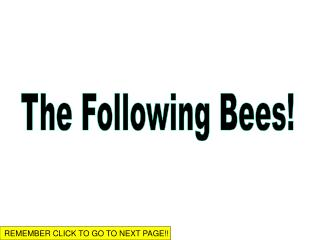 The Following Bees!