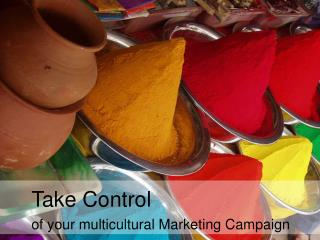 Take Control of your multicultural Marketing Campaign