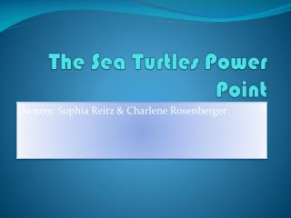 The Sea Turtles Power Point