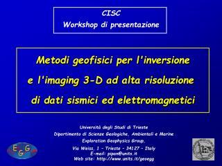 Metodi geofisici per l'inversione  e l'imaging 3-D ad alta risoluzione