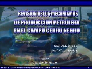 DE PRODUCCION PETROLERA