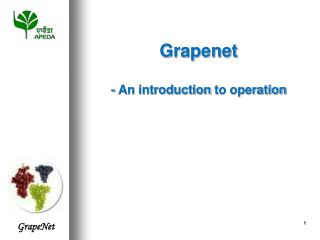Grapenet - An introduction  to operation