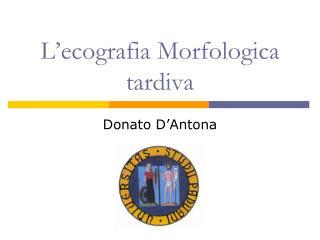 L'ecografia Morfologica tardiva