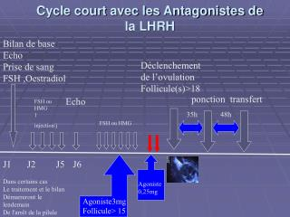 Cycle court avec les Antagonistes de la LHRH