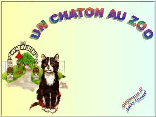 UN CHATON AU ZOO