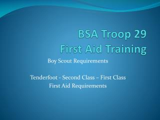 BSA Troop 29 First Aid Training