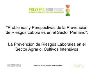 """""""Problemas y Perspectivas de la Prevención de Riesgos Laborales en el Sector Primario"""":"""