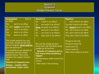 Section 3 Grammar Simple Present Tense