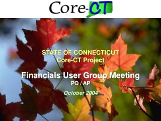 Financials User Group Meeting PO / AP     October 2004
