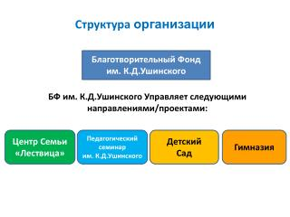 Структура  организации