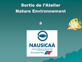 Sortie de l�Atelier  Nature Environnement �