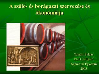 A szőlő- és borágazat szervezése és ökonómiája