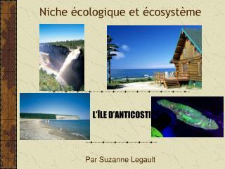 Niche écologique et écosystème