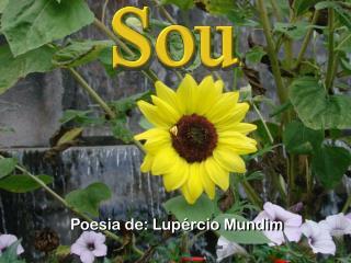Poesia de: Lupércio Mundim