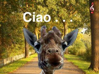 Ciao . . .