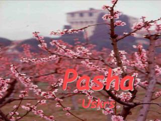 Pasha Uskrs