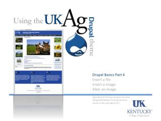 Drupal  Basics Part 4 Insert a file Insert a image Alter an image