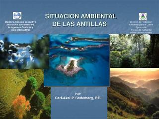 SITUACION AMBIENTAL  DE LAS ANTILLAS
