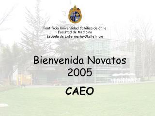 Pontificia Universidad Católica de Chile Facultad de Medicina Escuela de Enfermería-Obstetricia
