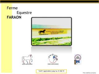 Ferme Equestre FARAON