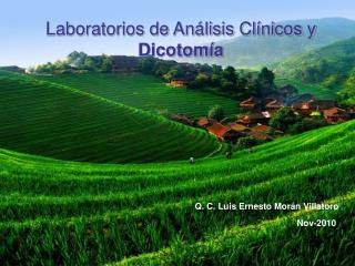 Laboratorios de Análisis Clínicos y  Dicotomía