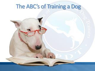 The ABC's of Training a Dog