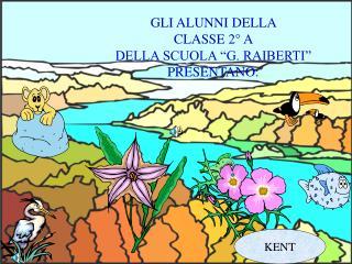"""GLI ALUNNI DELLA  CLASSE 2° A  DELLA SCUOLA """"G. RAIBERTI""""  PRESENTANO:"""