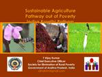 T Vijay Kumar Chief Executive Officer Society for Elimination of Rural Poverty Government of Andhra Pradesh, India