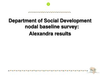 Department of Social Development nodal baseline survey: Alexandra results