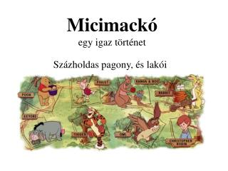 Micimack� egy igaz t�rt�net