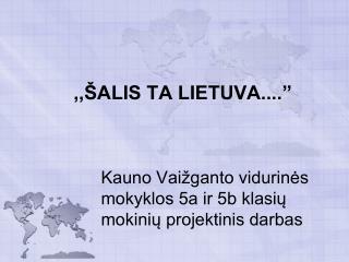 Kauno Vaižganto vidurinės mokyklos 5a ir 5b klasių mokinių projektinis darbas