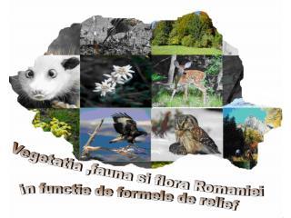 Vegetatia ,fauna si flora Romaniei