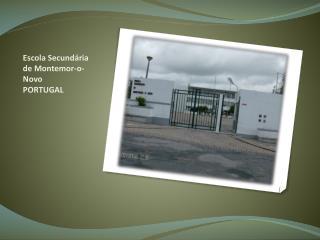 Escola Secundária de Montemor-o-Novo PORTUGAL