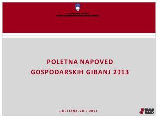 Poletna napoved  gospodarskih gibanj 2013