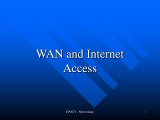 WAN and Internet Access