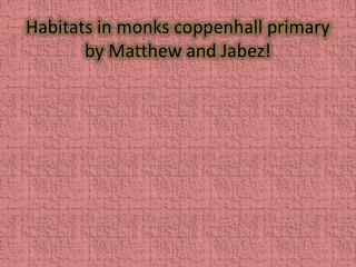 Habitats in monks  coppenhall  primary by Matthew and  Jabez !