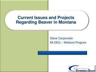 Current Issues and Projects Regarding Beaver in Montana