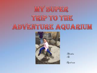 My Super  Trip to the  Adventure Aquarium