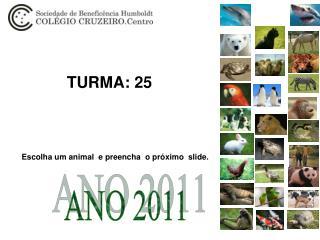 TURMA: 25