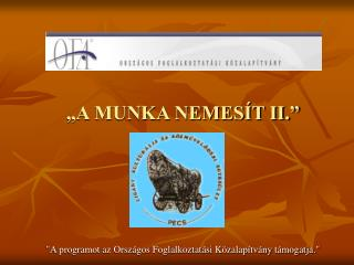 A MUNKA NEMES T II.