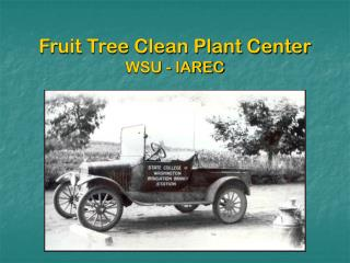 Fruit Tree Clean Plant Center WSU - IAREC