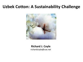 Uzbek Cotton: A Sustainability Challenge