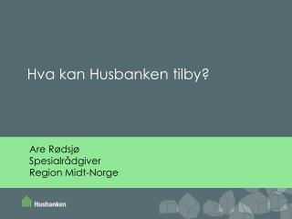 Are Rødsjø Spesialrådgiver Region Midt-Norge