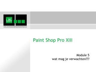 Paint Shop Pro XIII