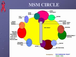 MSM CIRCLE