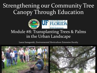 Strengthening our Community Tree Canopy Through Education Module #8: Transplanting Trees & Palms